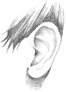 http://www.drawingcoach.com/image-files/ear_drawing_1.jpg